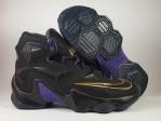 Sepatu Basket Lebron 13 Black Purple Gold