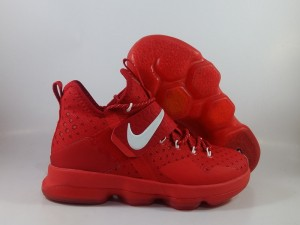 Lebron 14 Red