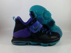 Lebron 14 Black Purple